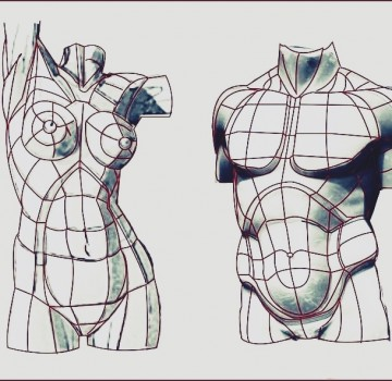 Matriz abdomen